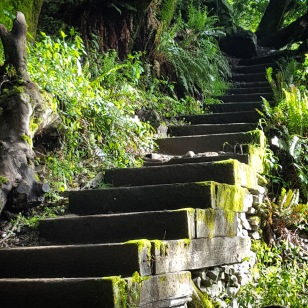I love stairs.