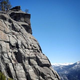 Free climbing guy!